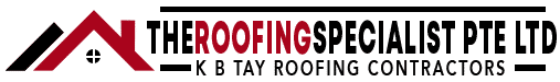 The Roofing Specialist
